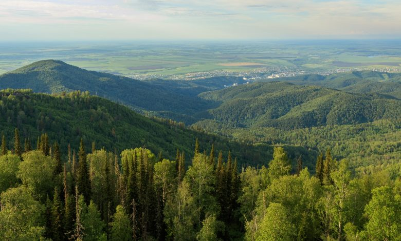 биосферен резерват в Стара планина